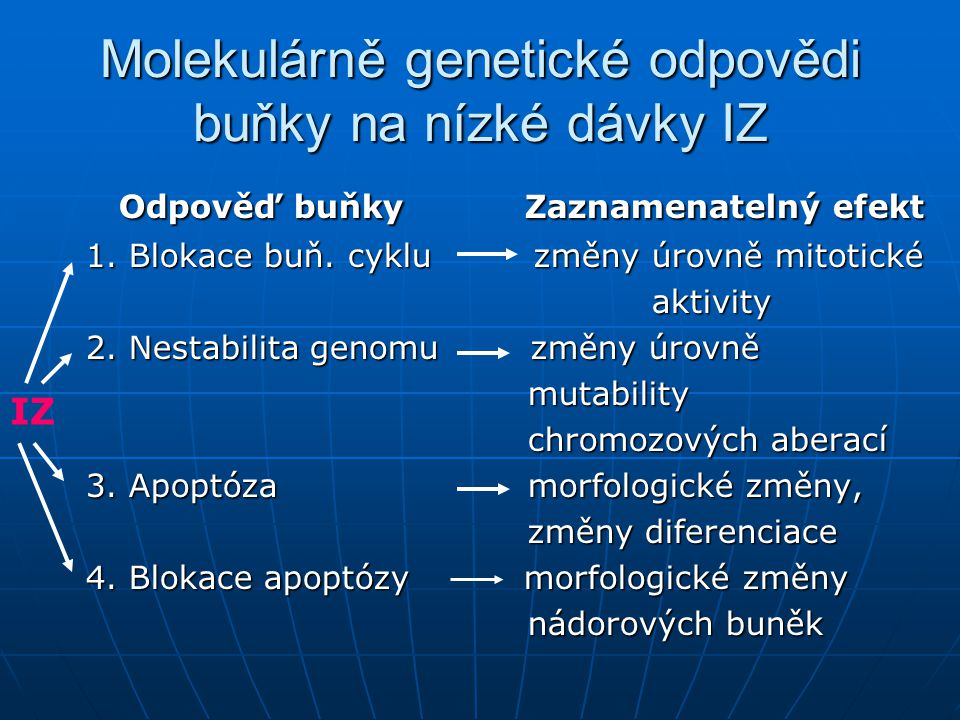 Molekulárně genetické odpovědi buňky na nízké dávky IZ Odpověď buňky Zaznamenatelný efekt Odpověď buňky Zaznamenatelný efekt 1. Blokace buň. cyklu změ