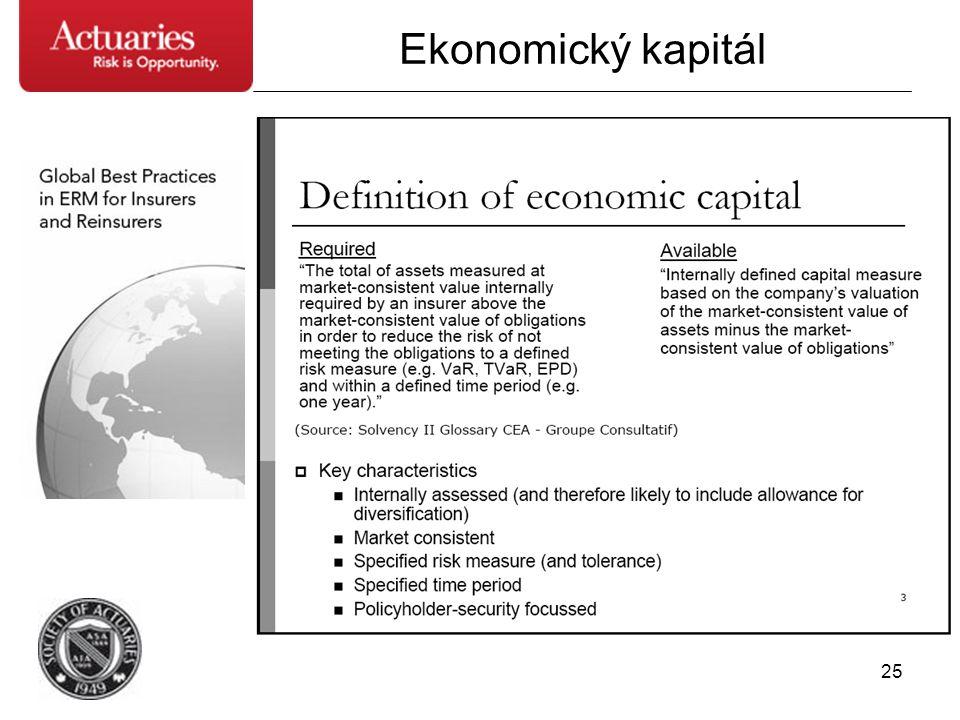 25 Ekonomický kapitál