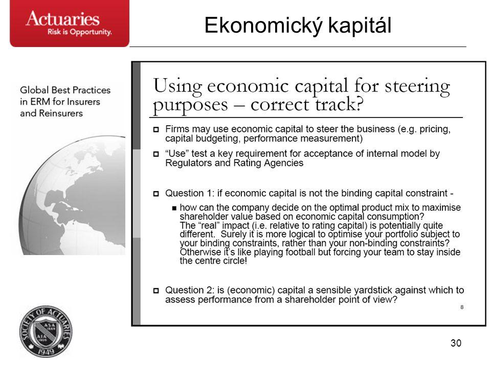 30 Ekonomický kapitál