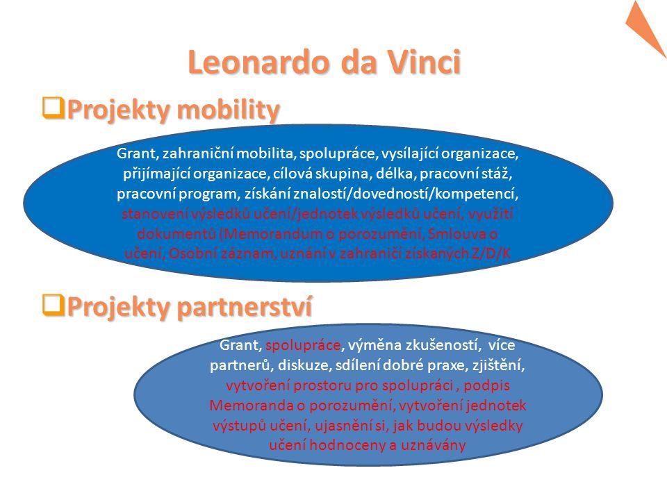 Leonardo da Vinci  Projekty mobility  Projekty partnerství Grant, zahraniční mobilita, spolupráce, vysílající organizace, přijímající organizace, cí