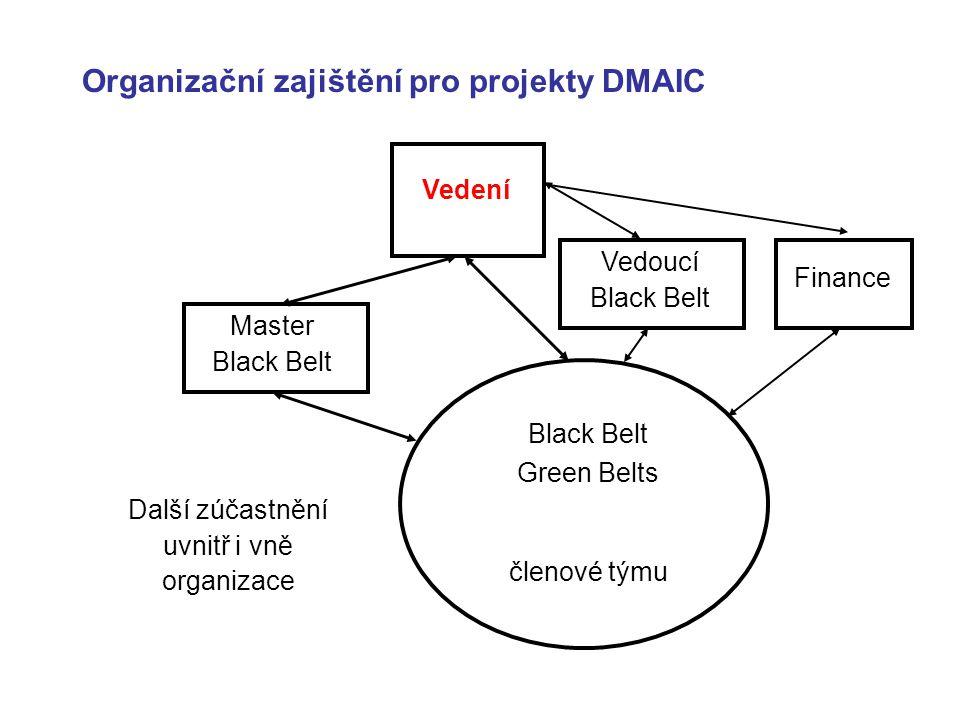 Organizační zajištění pro projekty DMAIC Vedení Master Black Belt Black Belt Green Belts členové týmu Další zúčastnění uvnitř i vně organizace Vedoucí