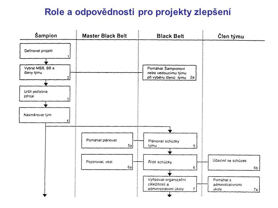 Role a odpovědnosti pro projekty zlepšení