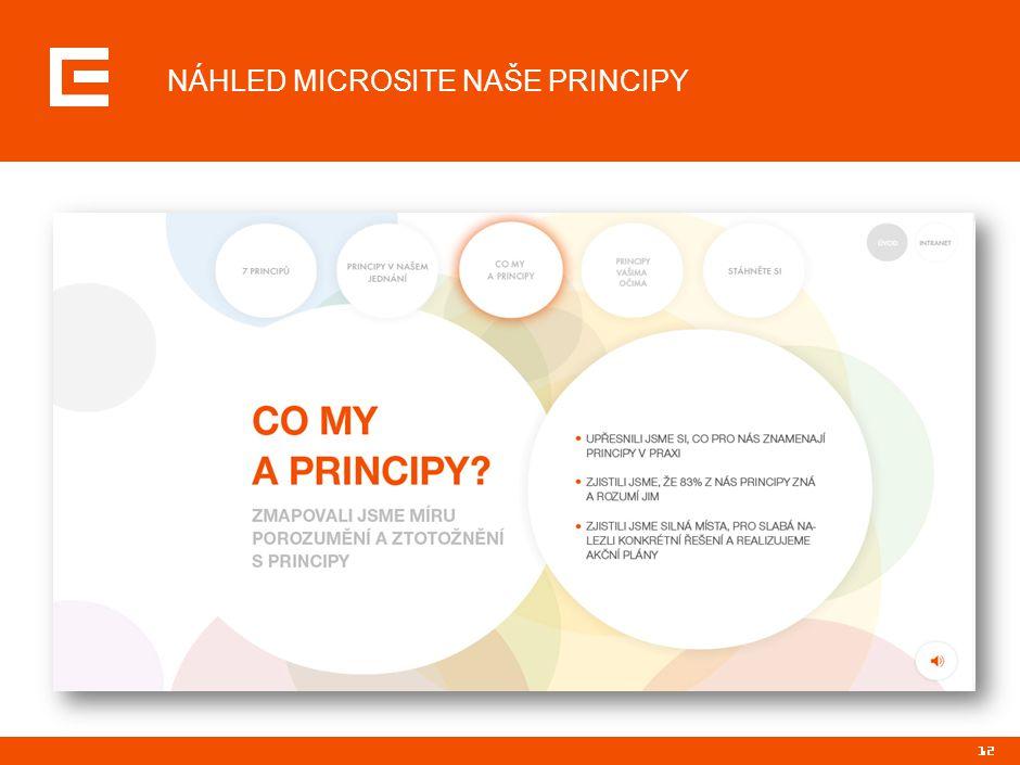 12 NÁHLED MICROSITE NAŠE PRINCIPY