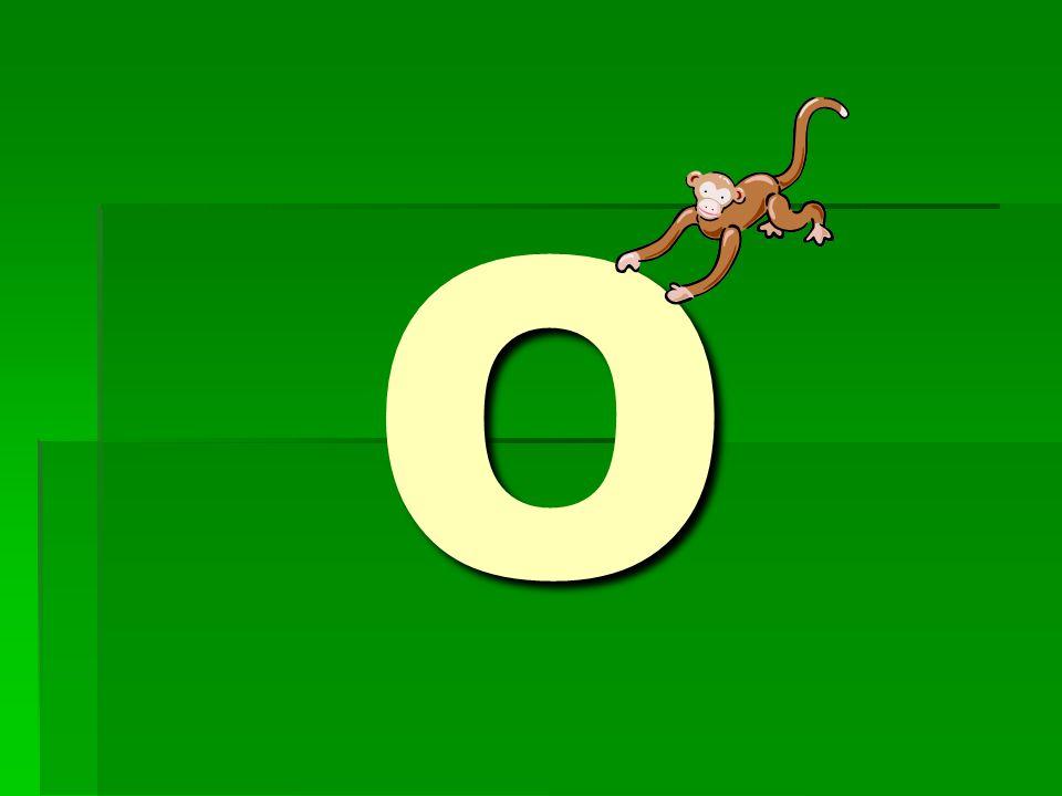 Kde v obrázku najdeš písmeno O?