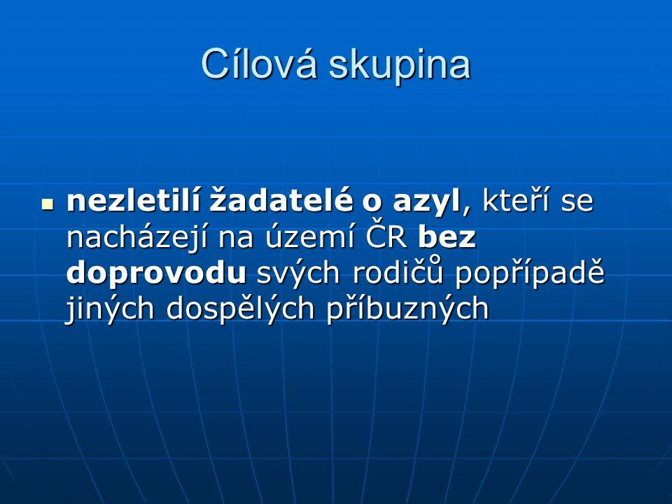 Individuální asistence 09/2005 – 08/2007  1.fáze - 9 dvojic •13 vyškolených •9 IA  2.