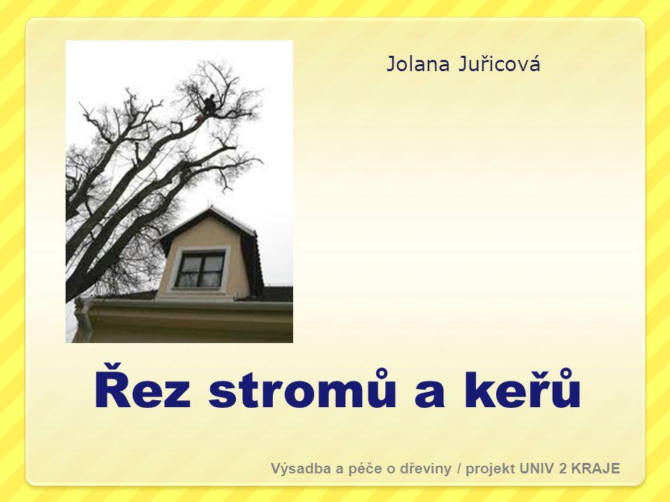 Řez stromů a keřů Jolana Juřicová Výsadba a péče o dřeviny / projekt UNIV 2 KRAJE