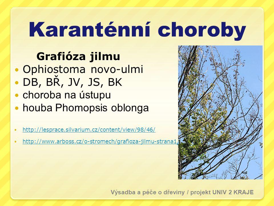 Karanténní choroby Grafióza jilmu  Ophiostoma novo-ulmi  DB, BŘ, JV, JS, BK  choroba na ústupu  houba Phomopsis oblonga  http://lesprace.silvarium.cz/content/view/98/46/ http://lesprace.silvarium.cz/content/view/98/46/  http://www.arboss.cz/o-stromech/grafioza-jilmu-strana1 / http://www.arboss.cz/o-stromech/grafioza-jilmu-strana1 / Výsadba a péče o dřeviny / projekt UNIV 2 KRAJE
