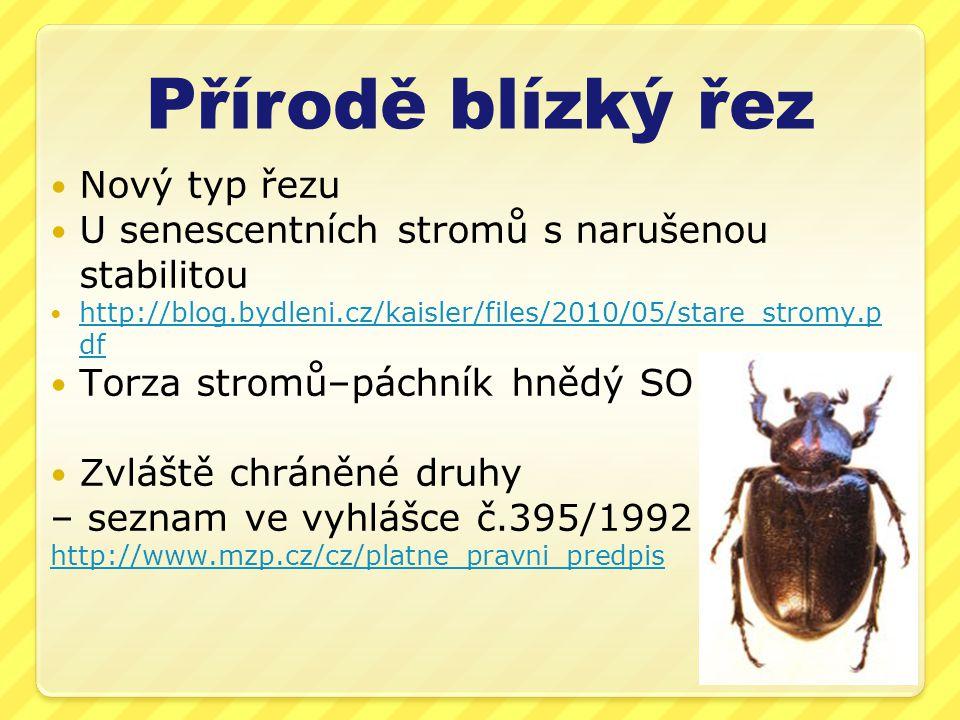 Přírodě blízký řez  Nový typ řezu  U senescentních stromů s narušenou stabilitou  http://blog.bydleni.cz/kaisler/files/2010/05/stare_stromy.p df http://blog.bydleni.cz/kaisler/files/2010/05/stare_stromy.p df  Torza stromů–páchník hnědý SO  Zvláště chráněné druhy – seznam ve vyhlášce č.395/1992 http://www.mzp.cz/cz/platne_pravni_predpis