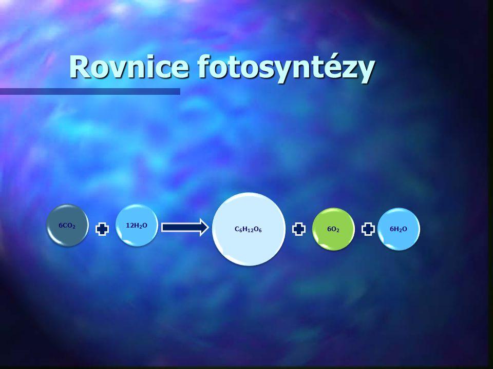 Rovnice fotosyntézy energie fotonu energie fotonu 6 CO 2 + 12 H 2 O ------------> ------------> C 6 H 12 O 6 + 6 O 2 + 6 H 2 O ------------> C 6 H 12 O 6 + 6 O 2 + 6 H 2 Oasimilační barviva barviva
