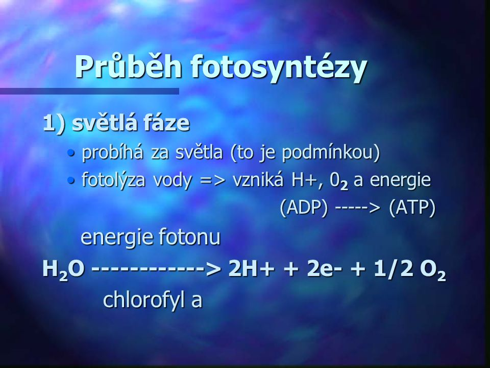 Průběh fotosyntézy 1) světlá fáze •probíhá za světla (to je podmínkou) •fotolýza vody => vzniká H+, 0 2 a energie (ADP) -----> (ATP) (ADP) -----> (ATP