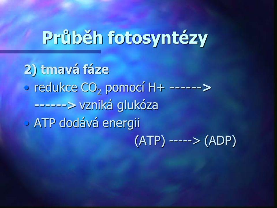 Faktory ovlivňující fotosyntézu - vnější •světlo •intenzita světla •čím vyšší tím rychleji probíhá fotosyntéza •kvalita světla •červené časti spektra jsou potřebné nejvíc •etiolizace •začíná při zastínění (nějakou překážkou) rostliny => zblednutí rostliny => intenzívní růst rostliny