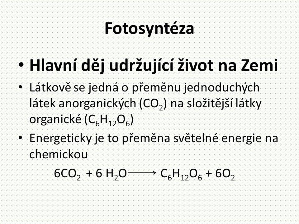 Fotosyntéza • Hlavní děj udržující život na Zemi • Látkově se jedná o přeměnu jednoduchých látek anorganických (CO 2 ) na složitější látky organické (