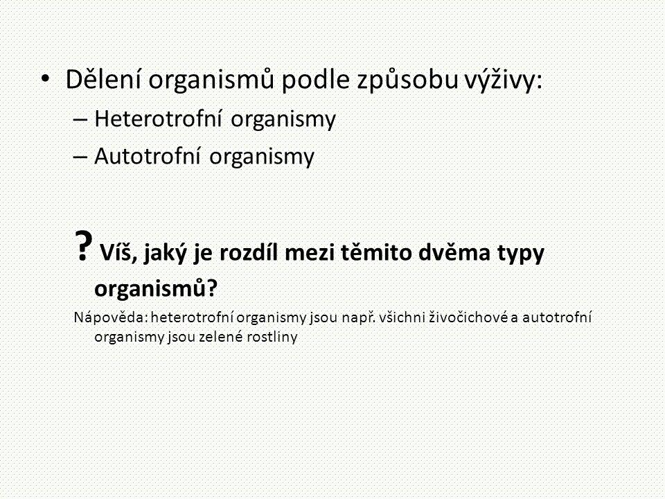 • Dělení organismů podle způsobu výživy: – Heterotrofní organismy – Autotrofní organismy ? Víš, jaký je rozdíl mezi těmito dvěma typy organismů? Nápov