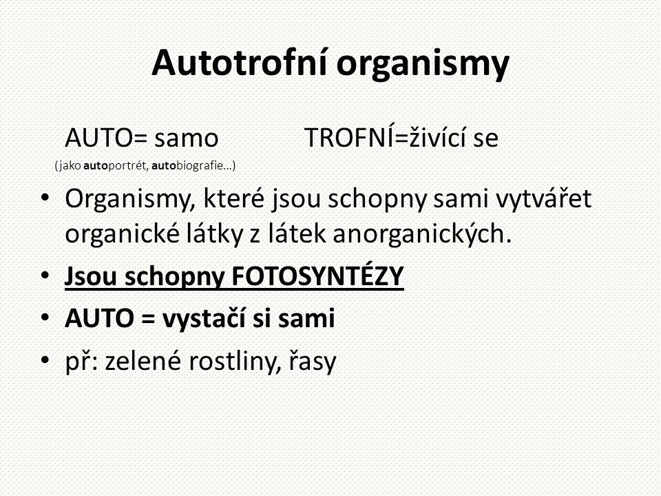 Autotrofní organismy AUTO= samo TROFNÍ=živící se (jako autoportrét, autobiografie…) • Organismy, které jsou schopny sami vytvářet organické látky z lá