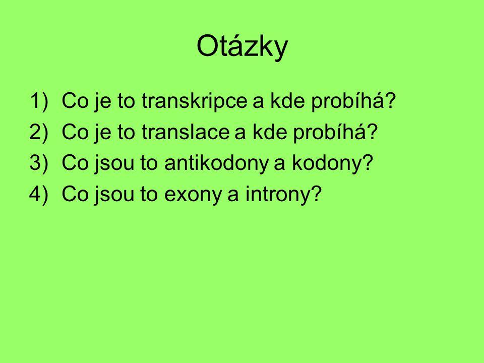 Otázky 1)Co je to transkripce a kde probíhá? 2)Co je to translace a kde probíhá? 3)Co jsou to antikodony a kodony? 4)Co jsou to exony a introny?