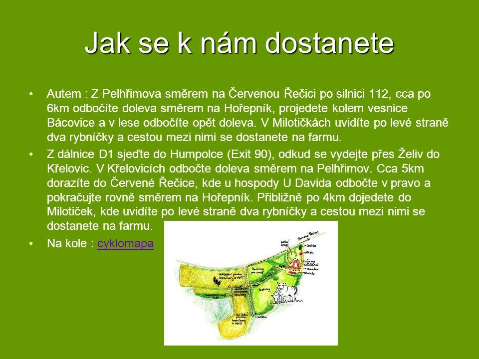 Jana Křišťanová mobil: +420 775 36 55 24 Ing.