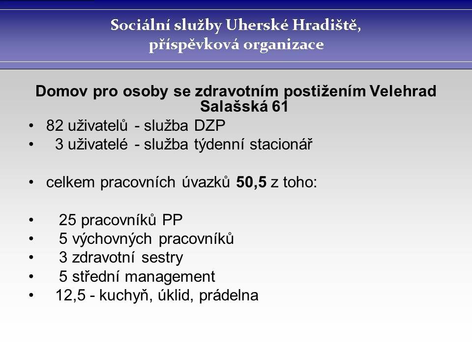 Domov pro osoby se zdravotním postižením Velehrad Salašská 61 82 uživatelů - služba DZP 3 uživatelé - služba týdenní stacionář celkem pracovních úvazk