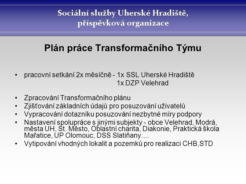 Plán práce Transformačního Týmu pracovní setkání 2x měsíčně - 1x SSL Uherské Hradiště 1x DZP Velehrad Zpracování Transformačního plánu Zjišťování zákl