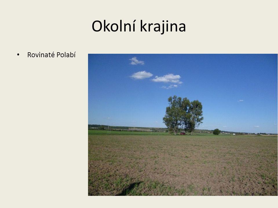 Okolní krajina Rovinaté Polabí