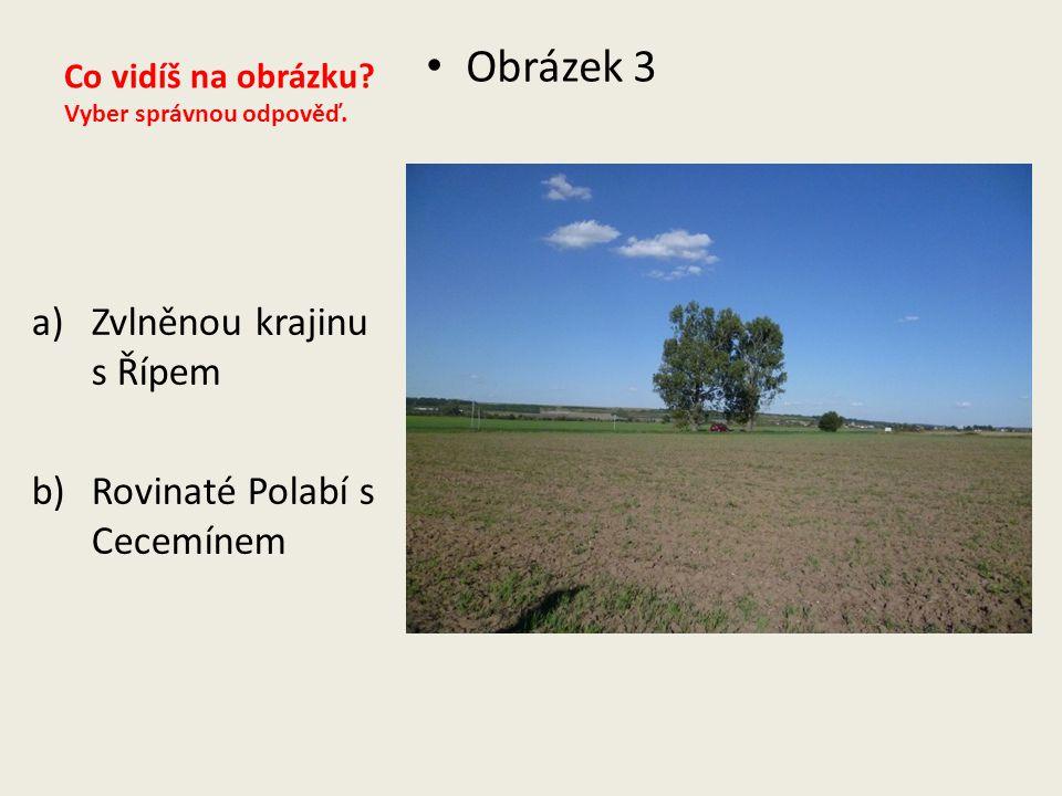 Co vidíš na obrázku? Vyber správnou odpověď. Obrázek 3 a)Zvlněnou krajinu s Řípem b)Rovinaté Polabí s Cecemínem