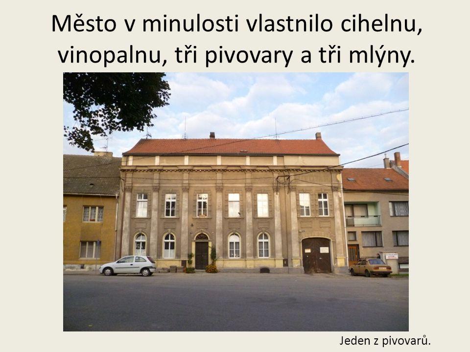 T.Stolzová nar.