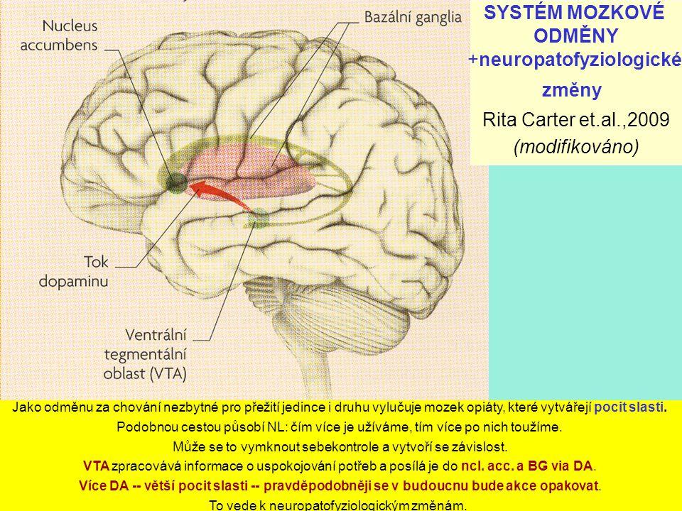 SYSTÉM MOZKOVÉ ODMĚNY +neuropatofyziologické změny Rita Carter et.al.,2009 (modifikováno) Jako odměnu za chování nezbytné pro přežití jedince i druhu