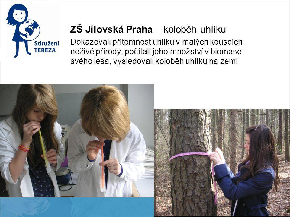 ZŠ Jílovská Praha – koloběh uhlíku Dokazovali přítomnost uhlíku v malých kouscích neživé přírody, počítali jeho množství v biomase svého lesa, vysledo