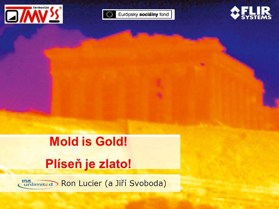 Mold is Gold! Plíseň je zlato! Ron Lucier (a Jiří Svoboda)