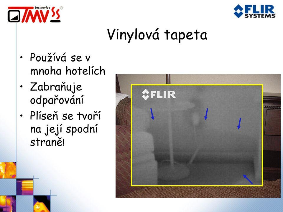 Vinylová tapeta Používá se v mnoha hotelích Zabraňuje odpařování Plíseň se tvoří na její spodní straně !