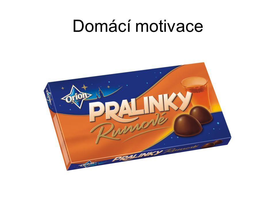 Domácí motivace