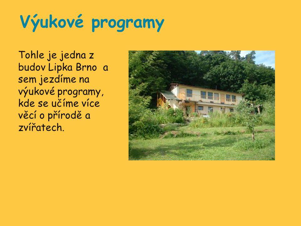 Výukové programy Tohle je jedna z budov Lipka Brno a sem jezdíme na výukové programy, kde se učíme více věcí o přírodě a zvířatech.