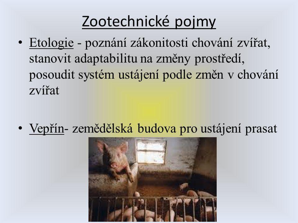 Zootechnické pojmy Etologie - poznání zákonitosti chování zvířat, stanovit adaptabilitu na změny prostředí, posoudit systém ustájení podle změn v chov