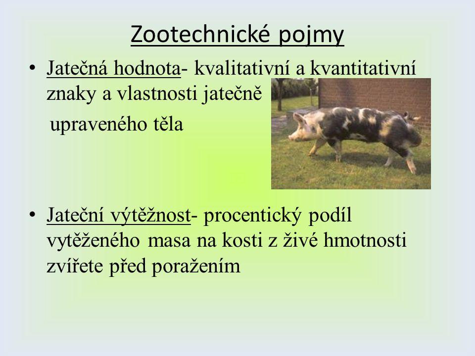 Zootechnické pojmy Jatečná hodnota- kvalitativní a kvantitativní znaky a vlastnosti jatečně upraveného těla Jateční výtěžnost- procentický podíl vytěž