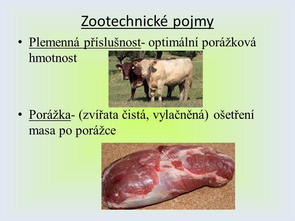 Zootechnické pojmy Plemenná příslušnost- optimální porážková hmotnost Porážka- (zvířata čistá, vylačněná) ošetření masa po porážce