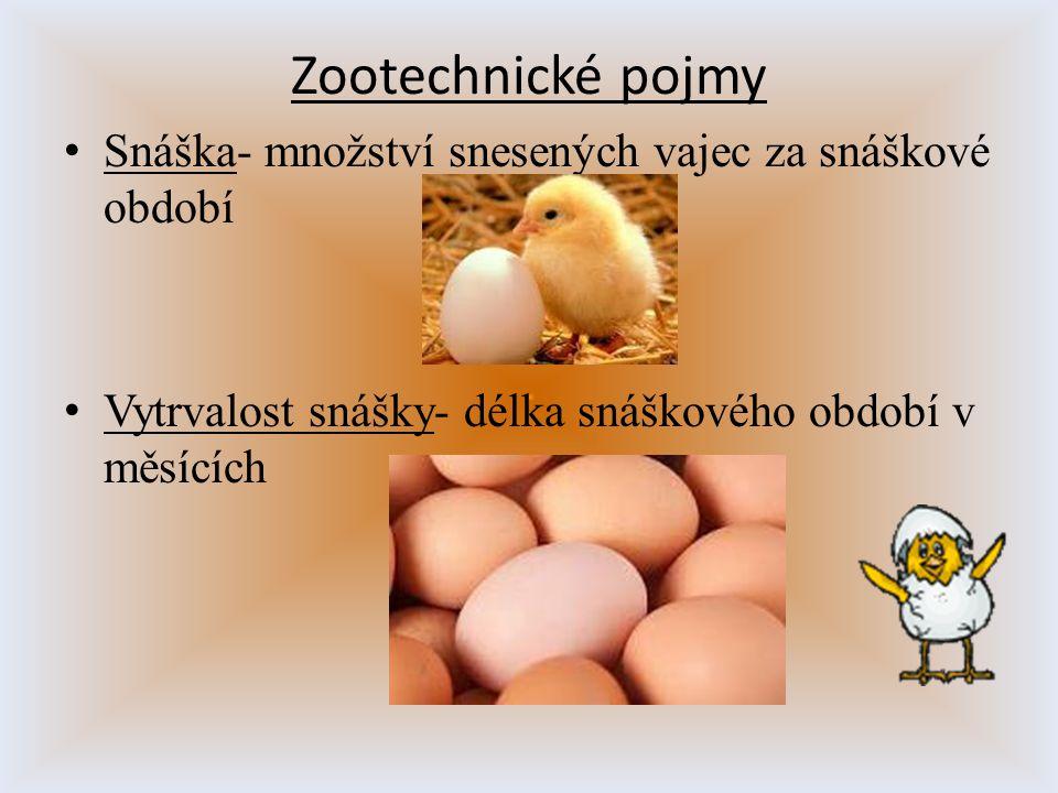Zootechnické pojmy S náška- množství snesených vajec za snáškové období V ytrvalost snášky- délka snáškového období v měsících