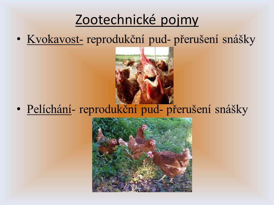 K vokavost- reprodukční pud- přerušení snášky P elíchání- reprodukční pud- přerušení snášky