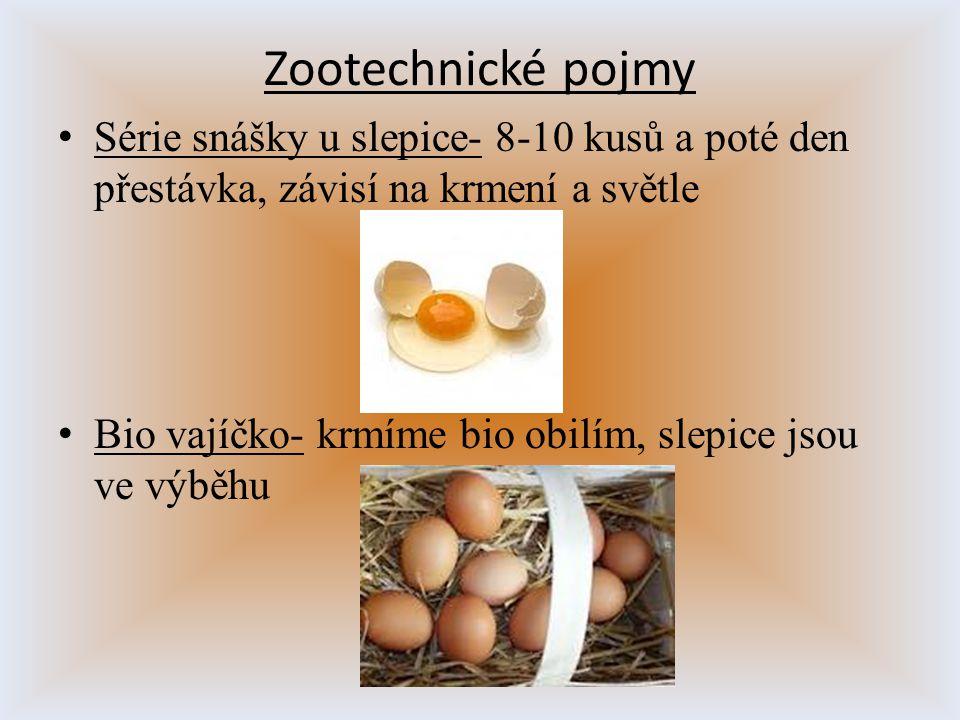 Série snášky u slepice- 8-10 kusů a poté den přestávka, závisí na krmení a světle Bio vajíčko- krmíme bio obilím, slepice jsou ve výběhu