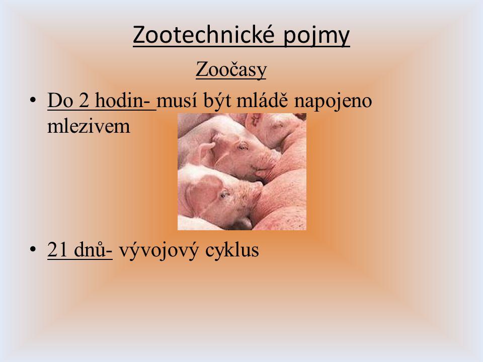 Zootechnické pojmy Zoočasy D o 2 hodin- musí být mládě napojeno mlezivem 2 1 dnů- vývojový cyklus