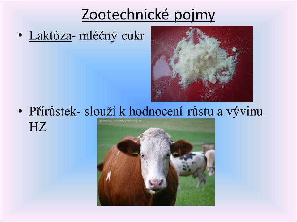Zootechnické pojmy Laktóza- mléčný cukr Přírůstek- slouží k hodnocení růstu a vývinu HZ