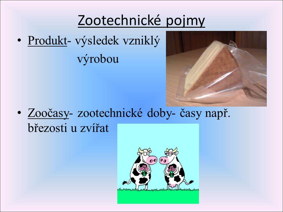 Zootechnické pojmy Produkt- výsledek vzniklý výrobou Zoočasy- zootechnické doby- časy např. březosti u zvířat