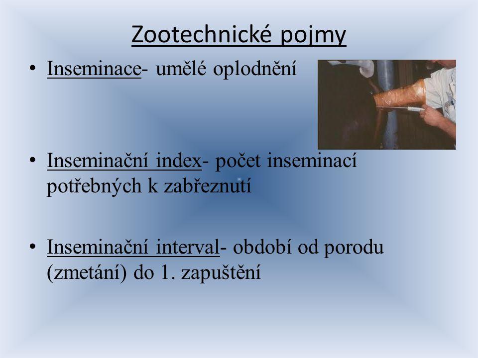 Zootechnické pojmy Inseminace- umělé oplodnění Inseminační index- počet inseminací potřebných k zabřeznutí Inseminační interval- období od porodu (zme
