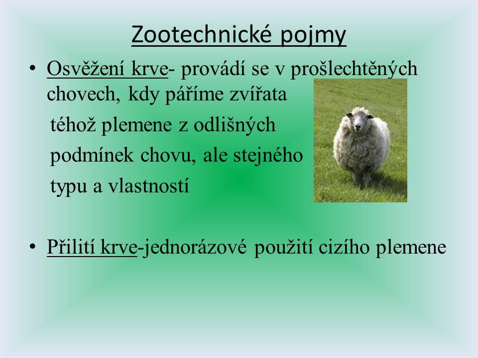 Zootechnické pojmy Osvěžení krve- provádí se v prošlechtěných chovech, kdy páříme zvířata téhož plemene z odlišných podmínek chovu, ale stejného typu