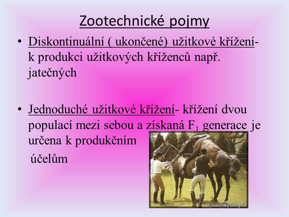 Zootechnické pojmy Diskontinuální ( ukončené) užitkové křížení- k produkci užitkových kříženců např. jatečných Jednoduché užitkové křížení- křížení dv