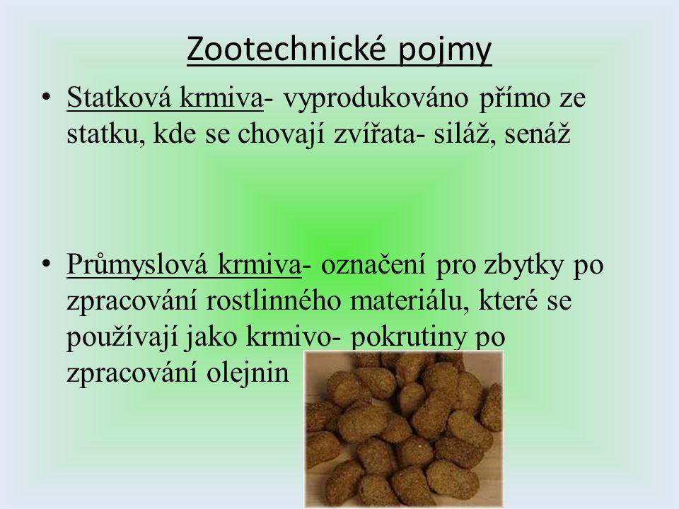 Zootechnické pojmy Statková krmiva- vyprodukováno přímo ze statku, kde se chovají zvířata- siláž, senáž Průmyslová krmiva- označení pro zbytky po zpra