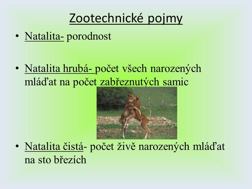 Zootechnické pojmy Natalita- porodnost Natalita hrubá- počet všech narozených mláďat na počet zabřeznutých samic Natalita čistá- počet živě narozených