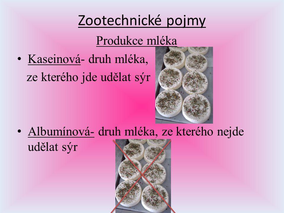 Zootechnické pojmy Produkce mléka Kaseinová- druh mléka, ze kterého jde udělat sýr Albumínová- druh mléka, ze kterého nejde udělat sýr