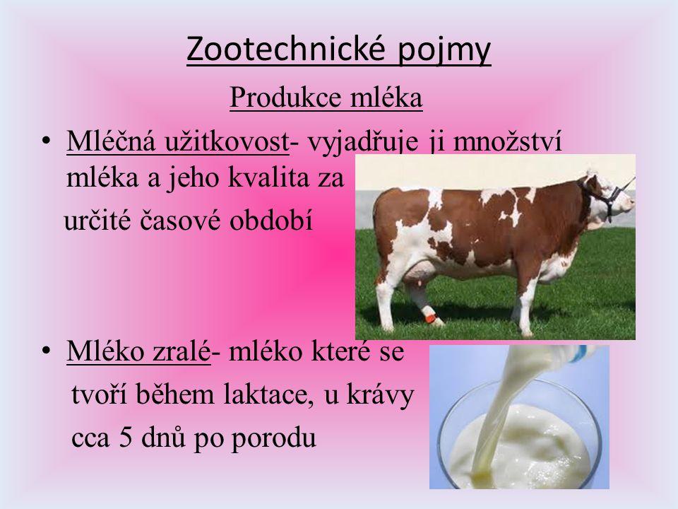 Zootechnické pojmy Produkce mléka Mléčná užitkovost- vyjadřuje ji množství mléka a jeho kvalita za určité časové období Mléko zralé- mléko které se tv