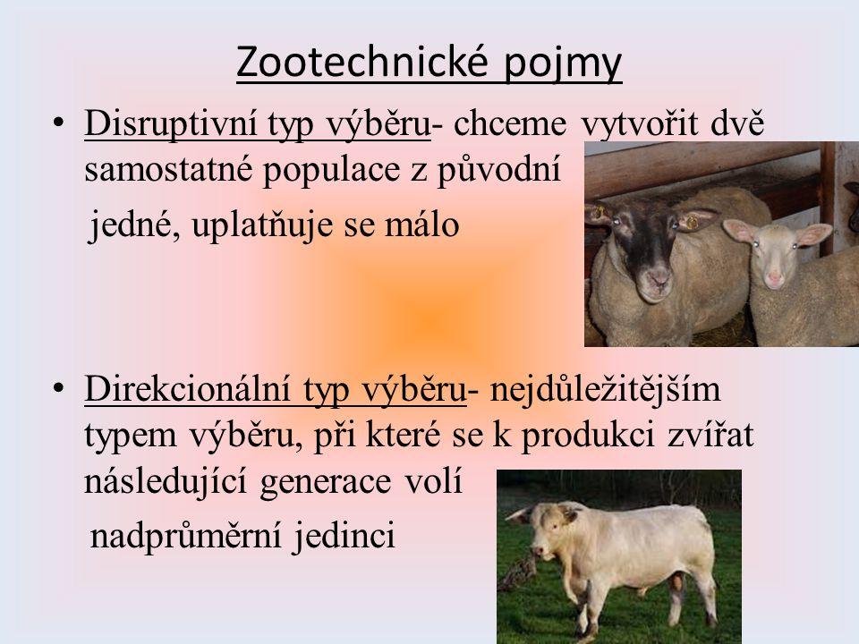 Zootechnické pojmy Disruptivní typ výběru- chceme vytvořit dvě samostatné populace z původní jedné, uplatňuje se málo Direkcionální typ výběru- nejdůl