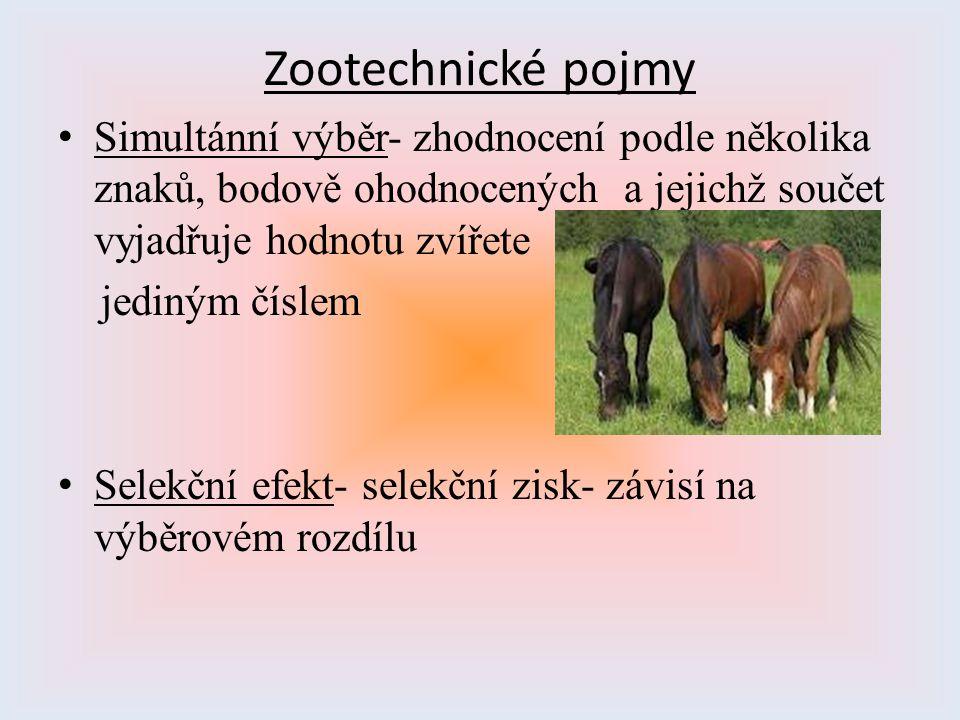 Zootechnické pojmy Simultánní výběr- zhodnocení podle několika znaků, bodově ohodnocených a jejichž součet vyjadřuje hodnotu zvířete jediným číslem Se