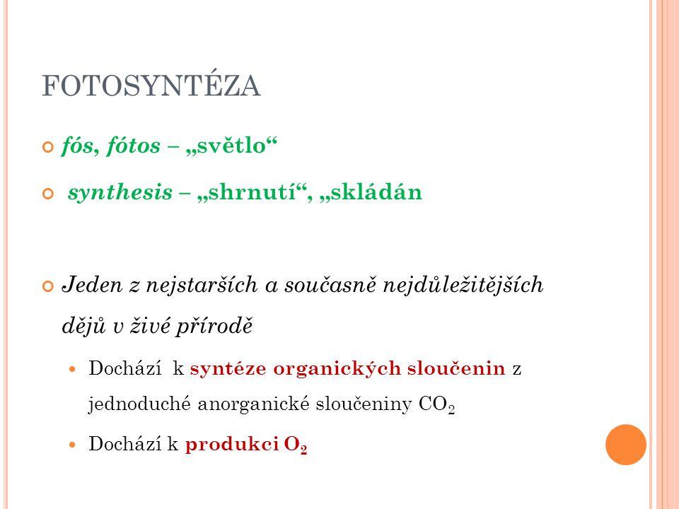 """FOTOSYNTÉZA fós, fótos – """"světlo"""" synthesis – """"shrnutí"""", """"skládán Jeden z nejstarších a současně nejdůležitějších dějů v živé přírodě  Dochází k synt"""